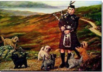 Cairnterriers och skotte med säckpipa