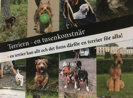 Terriern - en tusenkonstnär